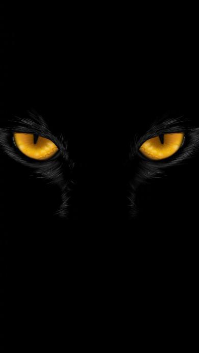 眼睛 凶猛 猫科 黑色