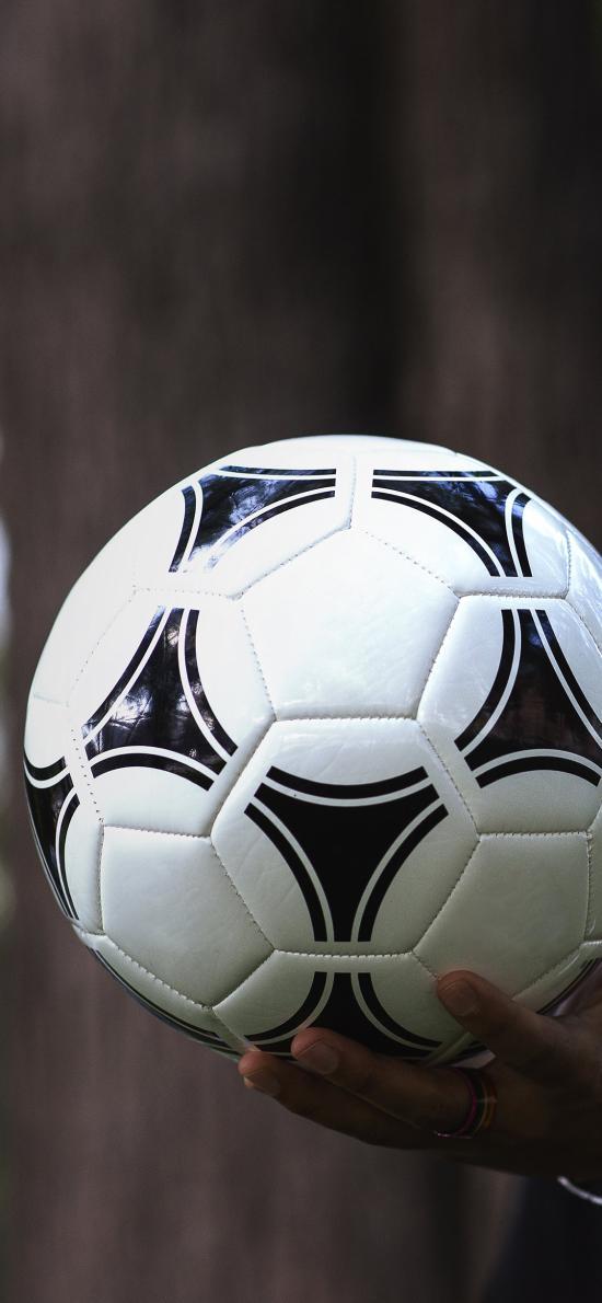 足球 运动 手