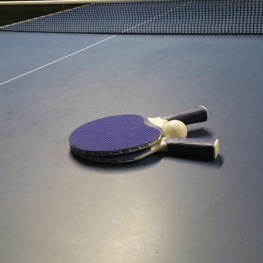 乒乓球 球桌 国球 拍子