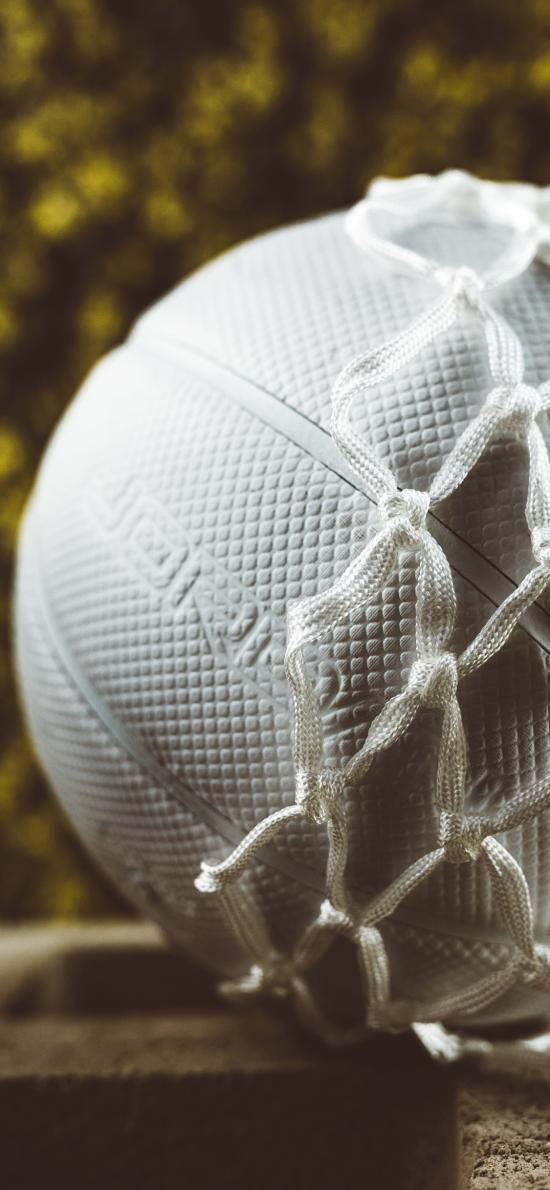 篮球 球网 白色 运动