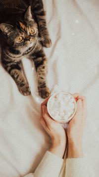 猫咪 宠物 棉花糖 马克杯