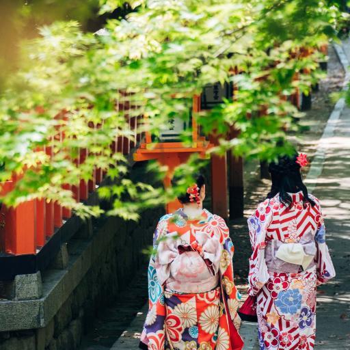 树木 枝叶 女孩背影 日本和服