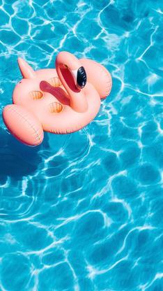 泳池 夏日 游泳圈 火烈鸟