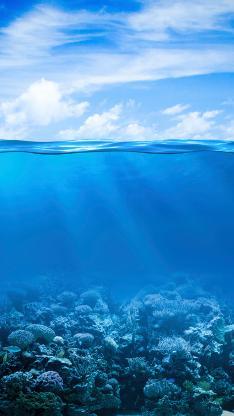 海洋 海底 海水 蓝色
