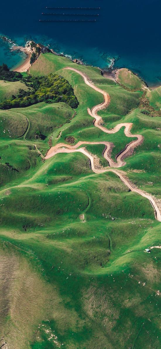 平原 草地 綠色 大自然 丘陵