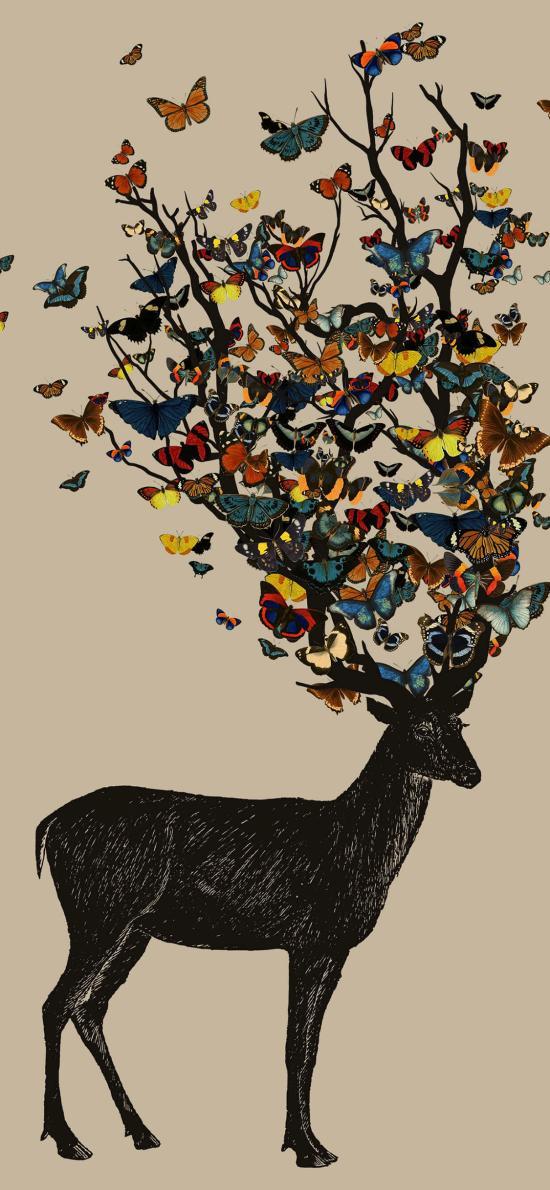 鹿 蝴蝶 鹿角 繪畫