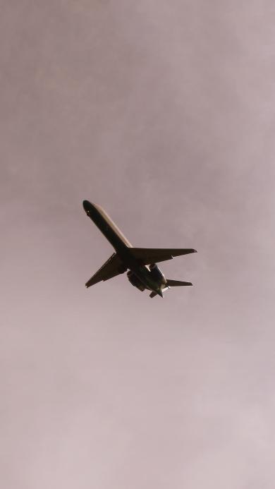 飞机 飞行 航空