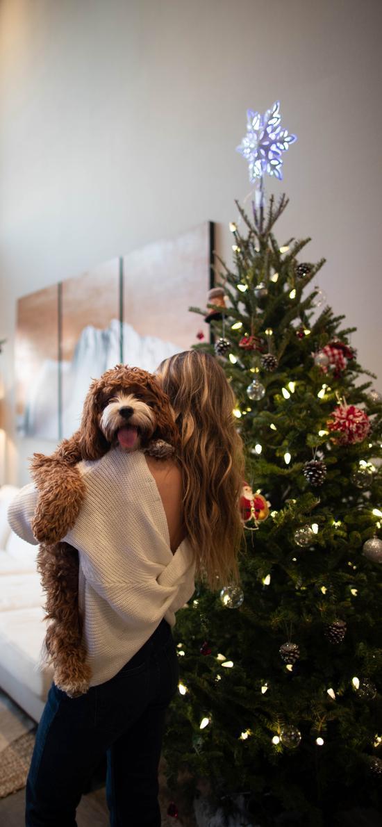 家居 圣诞树 美女背影 宠物狗