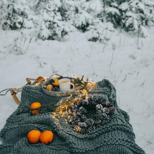 静物 针织物 橙 松果 室外
