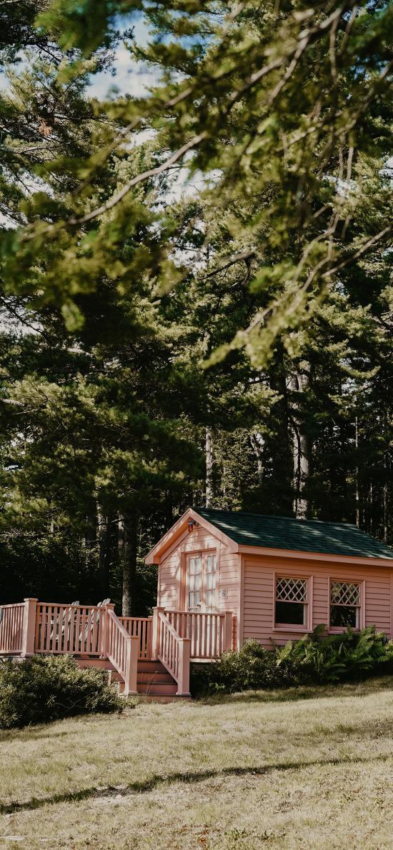 房屋 树林 户外 庭院