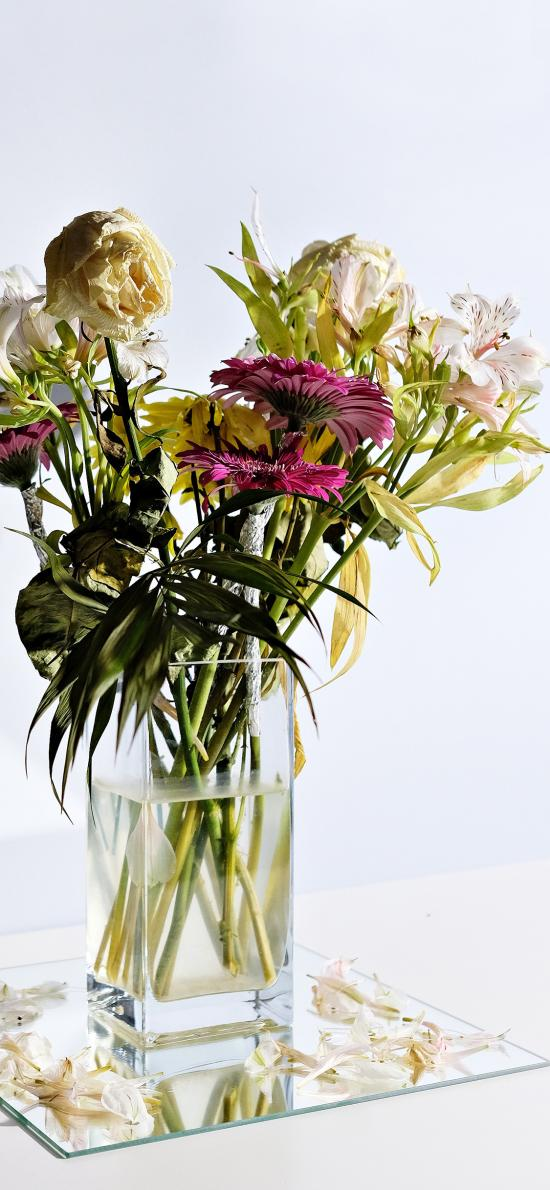 插花 花艺 玻璃瓶 鲜花