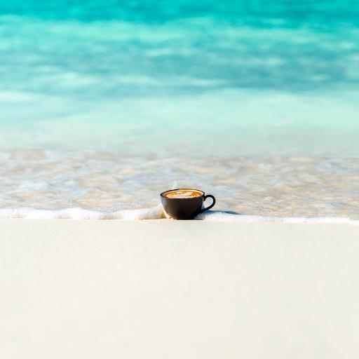 咖啡 海岸 沙滩 海水