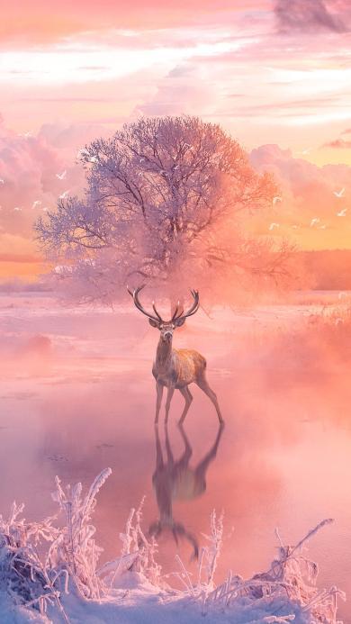鹿  迷幻 意境 唯美