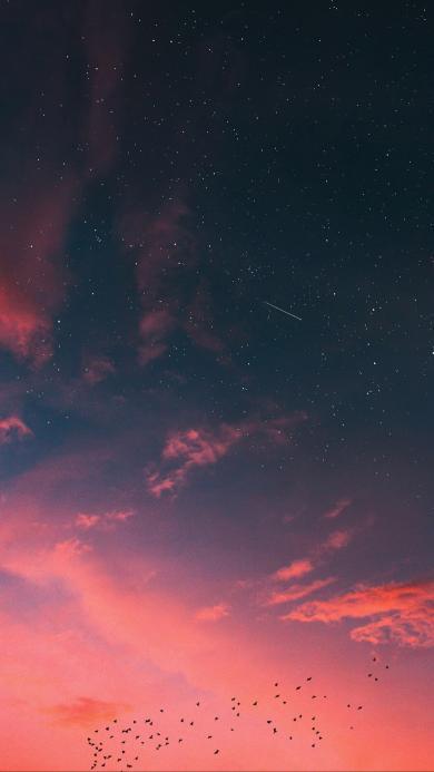 天空 渐变 唯美 鸟群星空