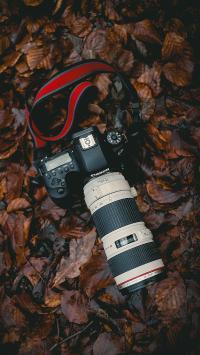 相机 绿叶 单反 镜头