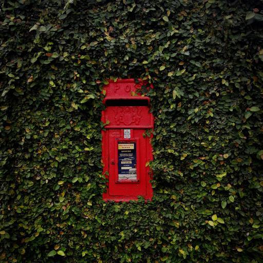 墙壁 绿植 信箱 红色