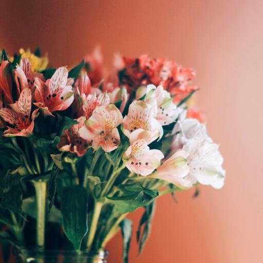 鲜花 花瓶 花束 盛开 枝叶