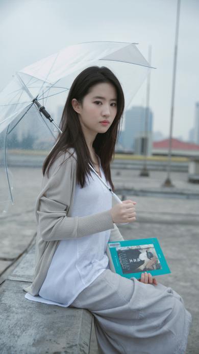 刘亦菲 演员 明星 艺人 伞 书本