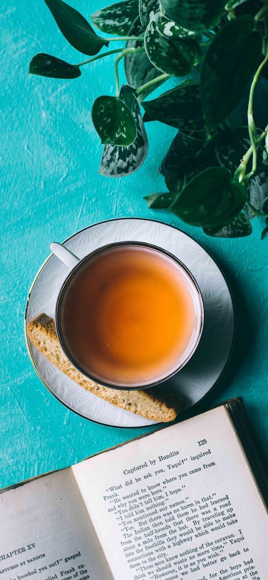 茶点 书籍 阅读 面包