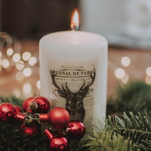 静物 蜡烛 火焰 摆摄 鹿头