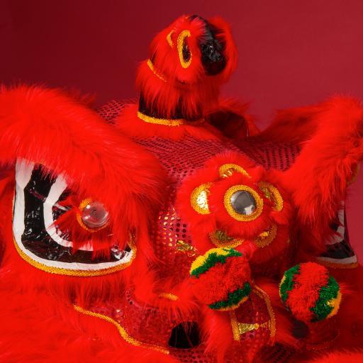 舞狮 庆典 传统 喜庆 红