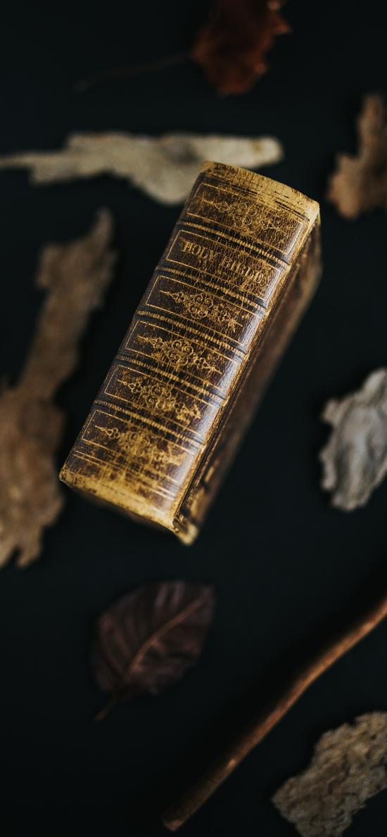 书籍 其它 静物 古老 树叶