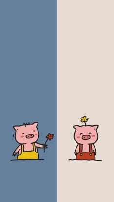 可爱 小花 猪 对话框 情侣