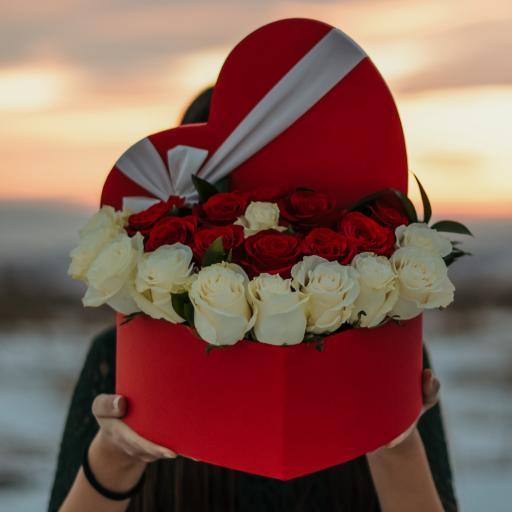 鲜花_鲜花 玫瑰花 白玫瑰 红玫瑰