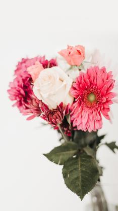 鲜花 菊花 花束 玫瑰