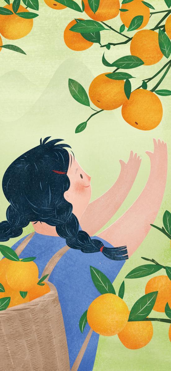 女孩 插画 摘橘子 手绘