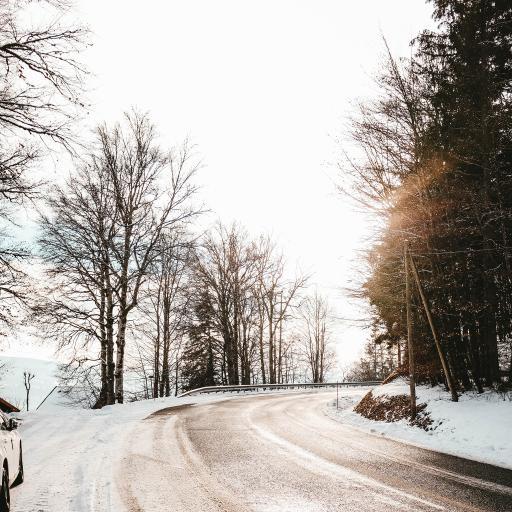 冬季 郊外 美景 白雪覆盖 阳光