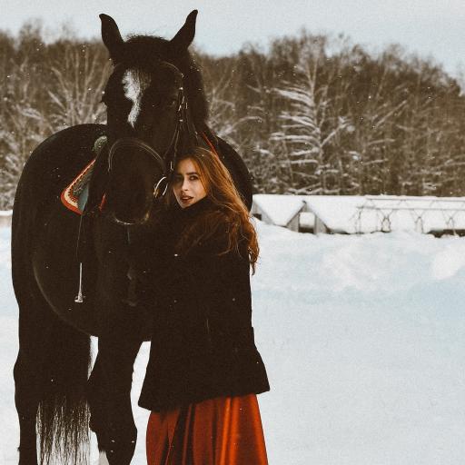 雪地 欧美美女 黑马