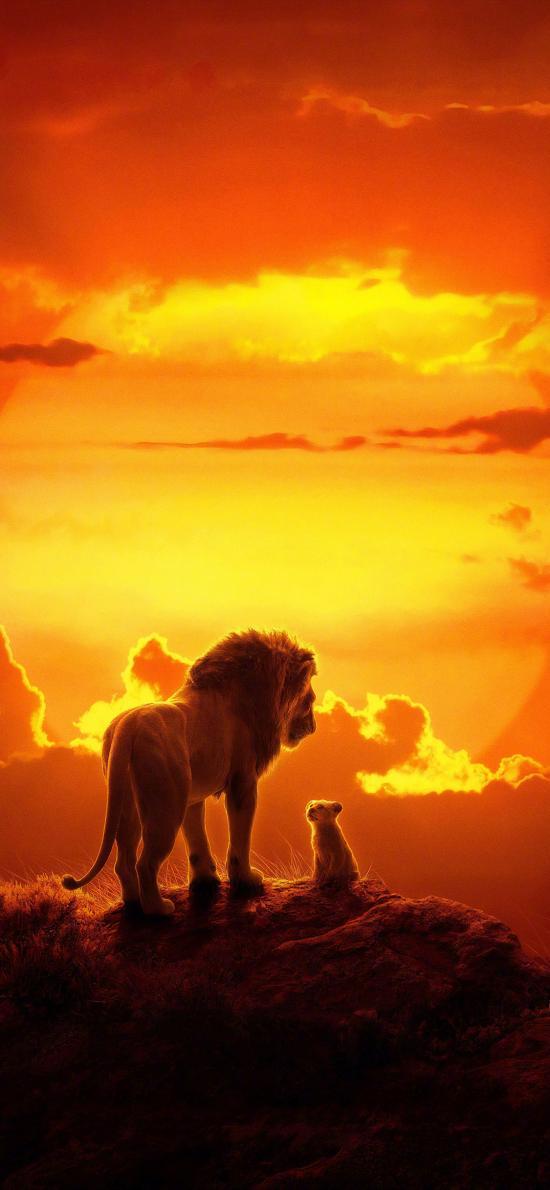狮子王 电影 欧美 海报 森?#31181;?#29579;