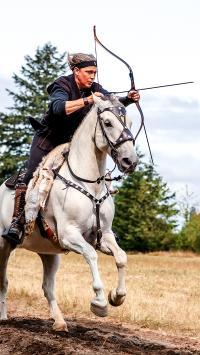 骑马 射箭 马术 马匹