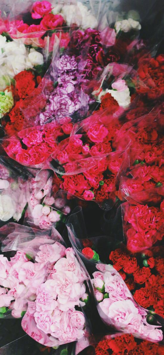 鲜花 康乃馨 花束 鲜艳