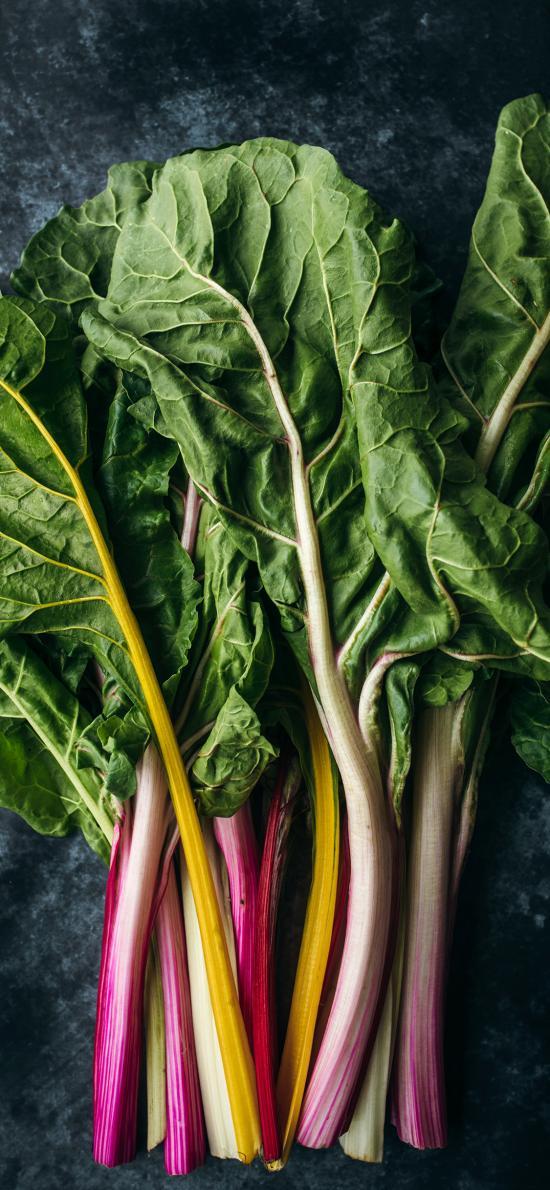 食材 蔬菜 时蔬 绿叶