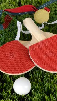 乒乓球 运动 奖牌 草坪