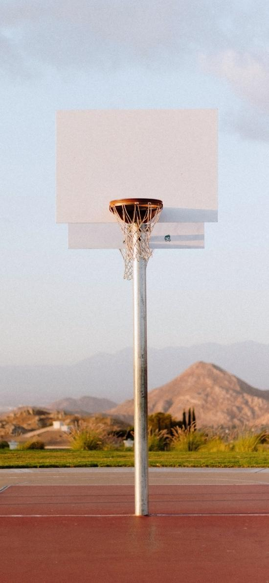 篮球架 球框 运动 球场
