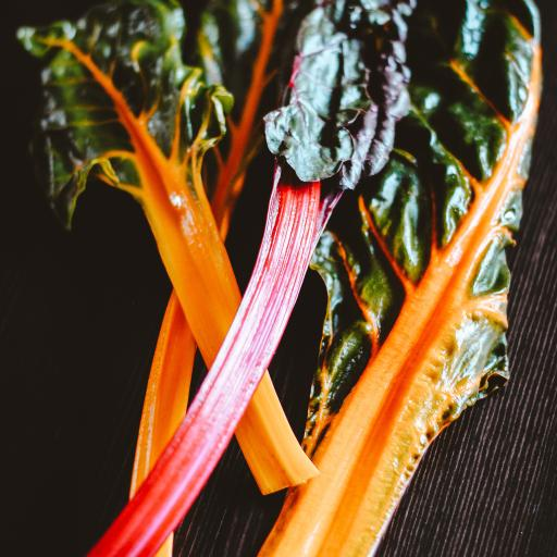食材 菜叶 食材 时蔬