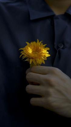 菊花 鲜花 小花 手 衬衫 胸前