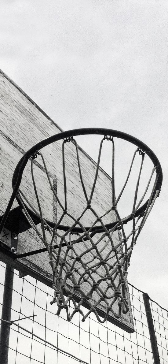 球框 篮球 网 运动 黑白