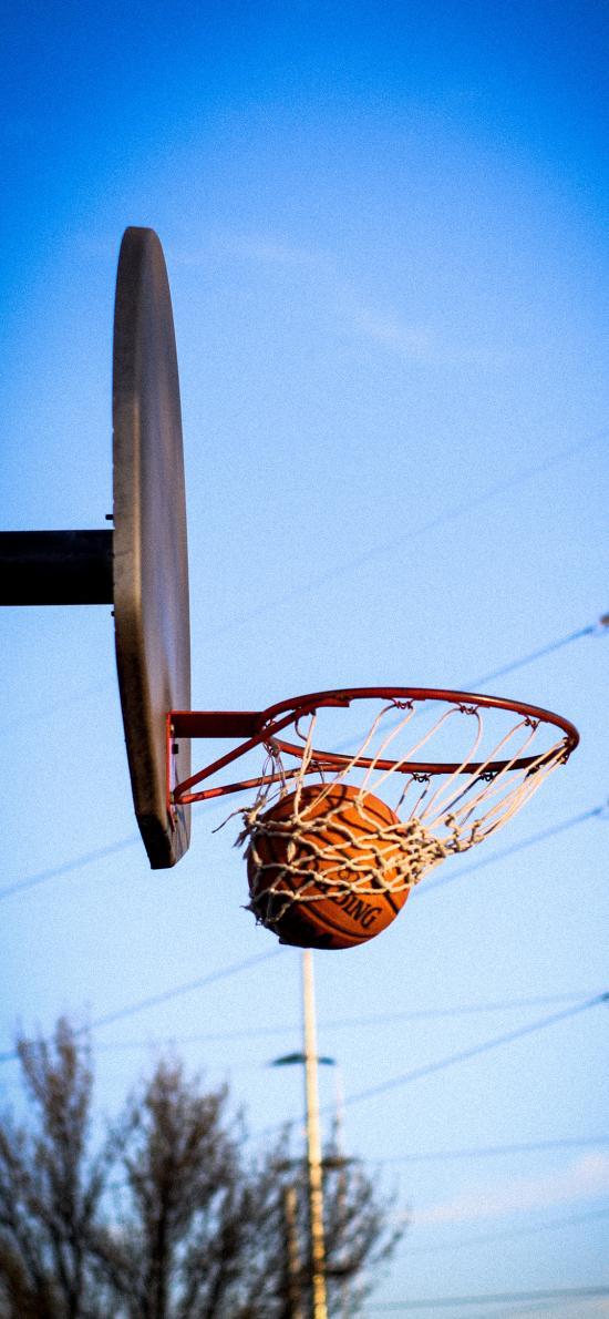 篮球 投篮 运动 球框 进球