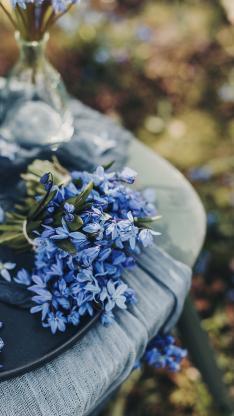 鲜花 小花 花簇 盛开