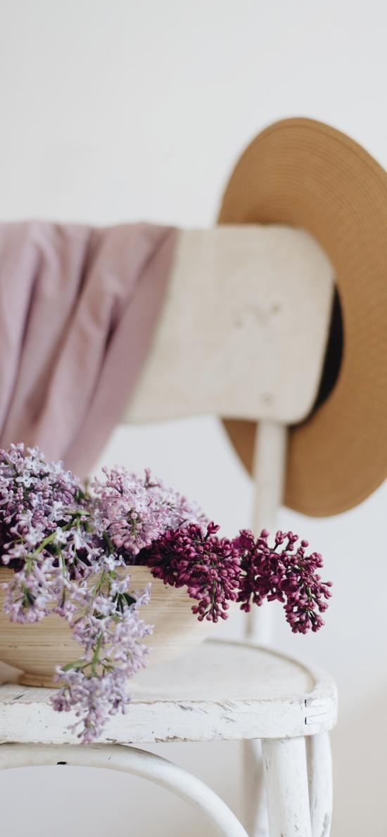 静物 椅子 帽子 鲜花 紫 丁香