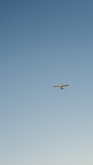 飞机 飞行 航空 滑翔机 蓝色