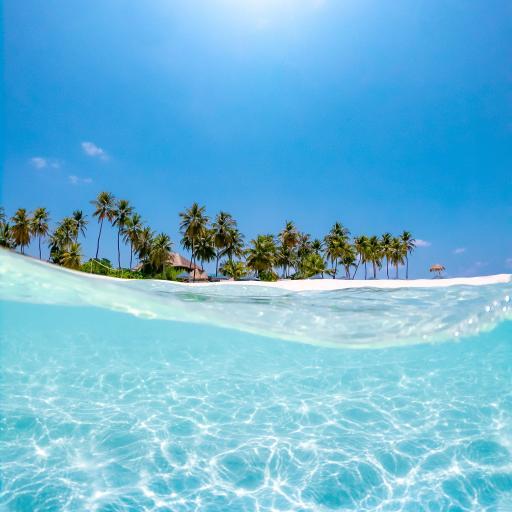 海岸 海水 清澈 度假 碧海蓝天
