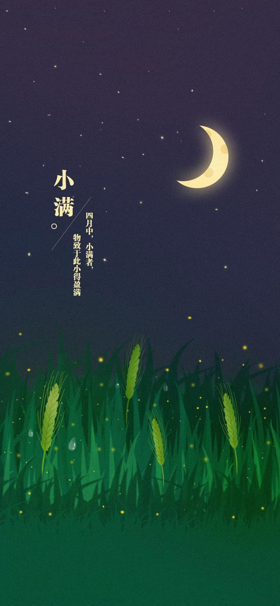 小满 二十四节气 田地 庄稼 插画 夜晚 麦穗