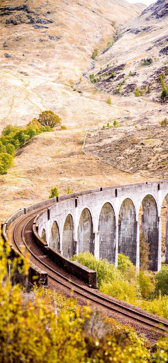 铁路 桥梁 野外 铁轨