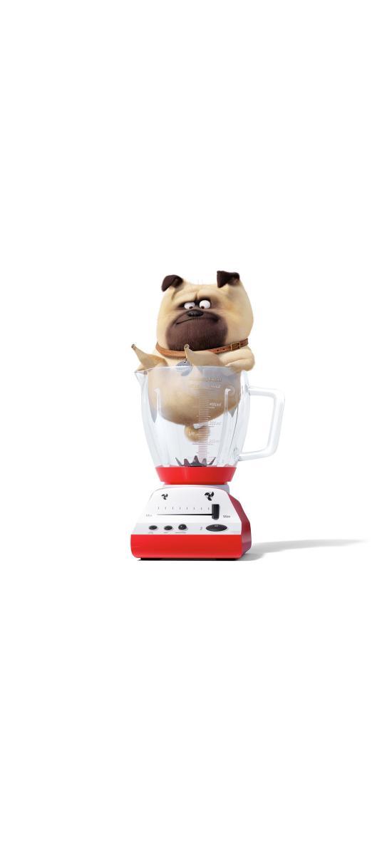 爱宠大机密2 电影 动画 狗 搅拌机