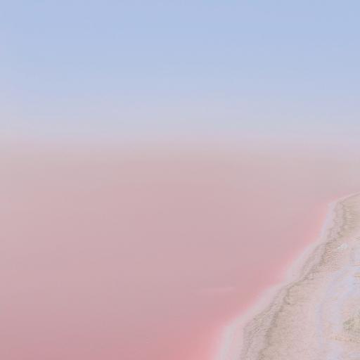 伊朗 Shiraz 盐湖 粉色